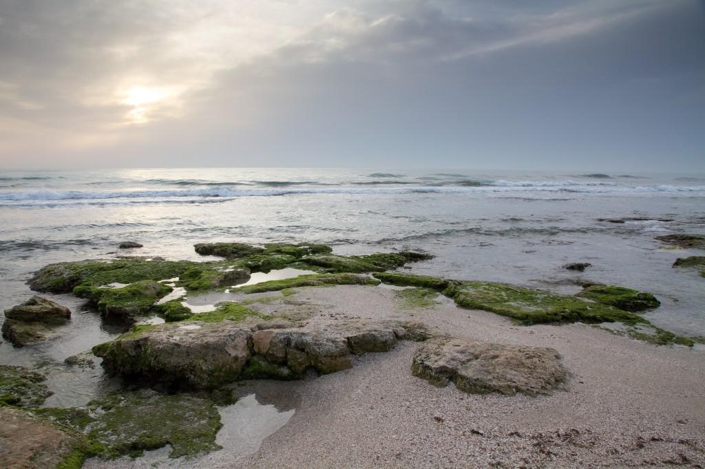 Playa rocosa de Aguamarga (Miguel Ángel Andrés)