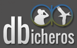 dbicheros.com curso de ornitologia y cosas de bichos y bicheros