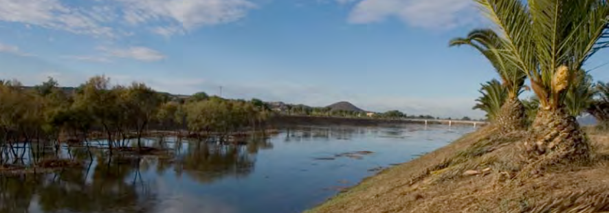 Desembocadura del río Segura