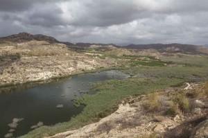 paisaje pantano