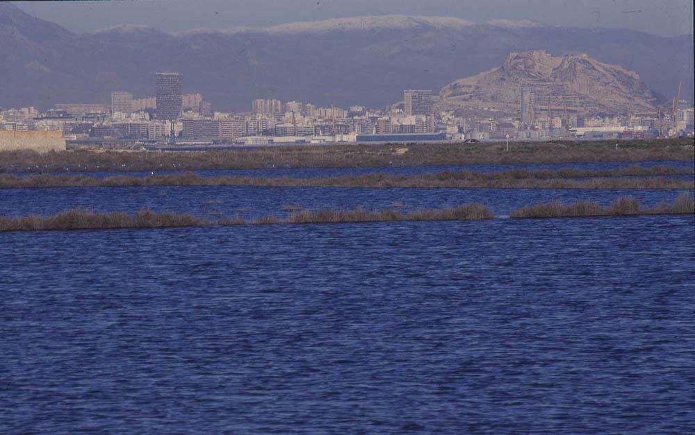 Saladar de Aguamarga completamente inundado en enero de 2002 (M. A. Pavón)