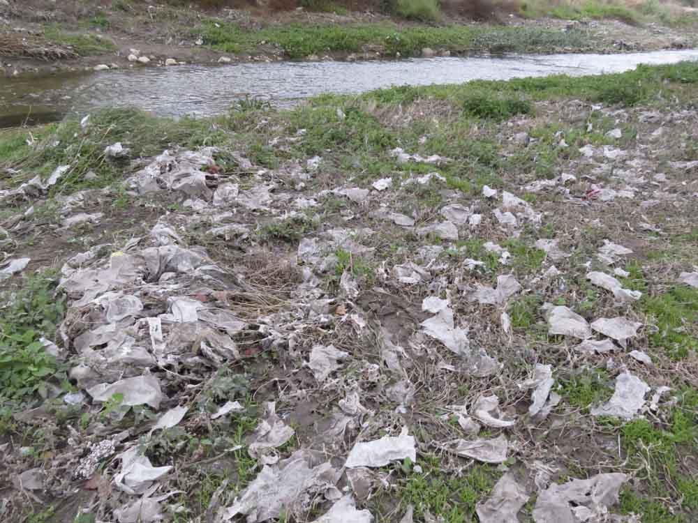 Restos de toallitas higiénicas en las orillas del río